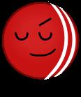Cricket Ball AnonymousUser