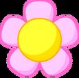 Flower Head 5