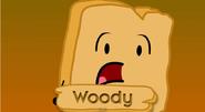 Woody's Promo Pic