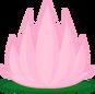 7b lotusflower