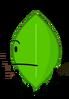 Leafy 17