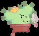 P&B Cactus Pose NEW