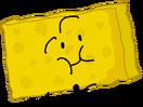 Spongy intro