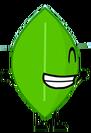 Leafy 9