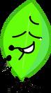 Leafy crying