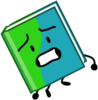 Book in BFB 6