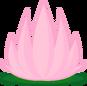 6b lotusflower