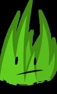 Rc Grass