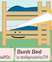 Bunk bed bfb 02 rc background
