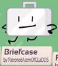 Briefcase bfb 02 rc background