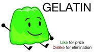 Vote Gelatin