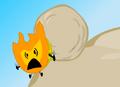 Firey 25