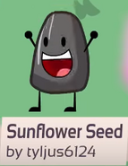 Sunflower seed bfb 02 rc background