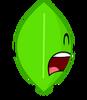 Leafy 14 2