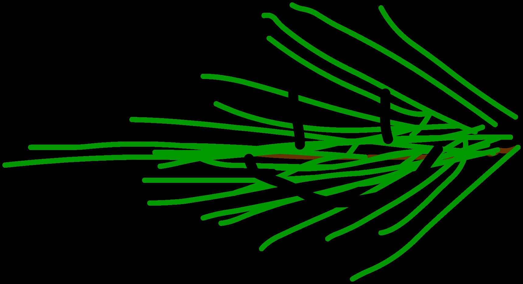 Pine Leafy