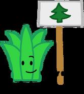 Aloe AnonymousUser