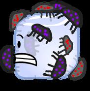 Ice cube bugs