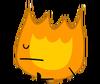 Firey 31