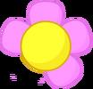 Flower Missing Petal