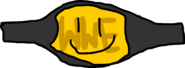 Rc WWE Championship Belt