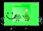 Cutie Sunflower as Rocky