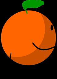 Rc Orangey