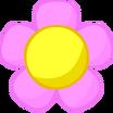 Old Flower Head