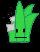 Aloe Bandaged AnonymousUser