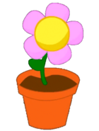 FlowerInAPotNotGif