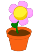 FlowerInAPotNotGif