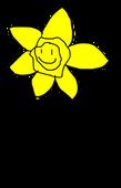 Rc Daffodil