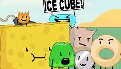 Team ice cube