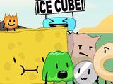 Team Ice Cube!