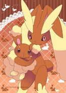 2f921aca739b307c92eb2c83495e6a14--buneary-pokemon-pokemon-lopunny