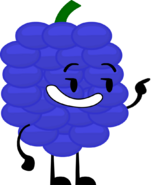 Concord Grapes Pose