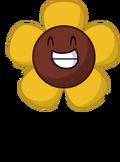 Sunflower Pose
