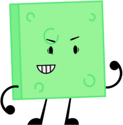 Object-Oppose Sponge Pose