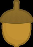 Acorn (1)