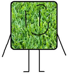 Grasscubo