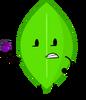 BFMT Leafy