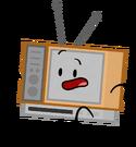 Televisy pose