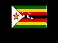 Flag Survivor Zimbabwe
