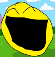 Yellow Face's Pose