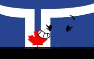 Toronto Flag Pose