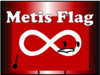 Metis Flag (Icon)