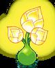 Gold Bloom Body