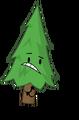 OIR Tree