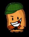 Irish potato-1