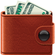 Wallet-money-icon