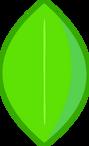 Leafy Body